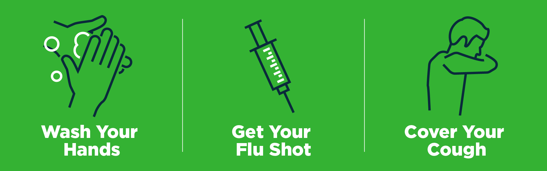 Flu Home